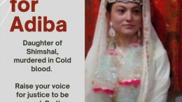 Who is Abida of Shimshal and What Happened to Her