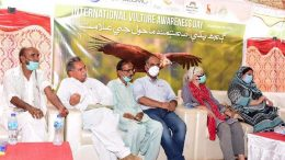 IUCN, SECMC and Baanhn Beli celebrate International Vulture Awareness Day in hilly town of Nagarparkar